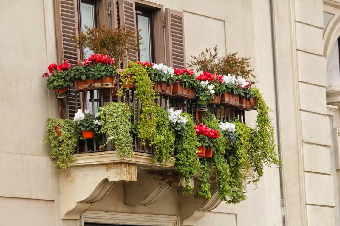 fiori per l'estate - balcone fiorito