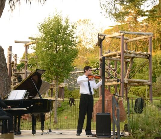 Concerti nella natura al Parco Natura Viva