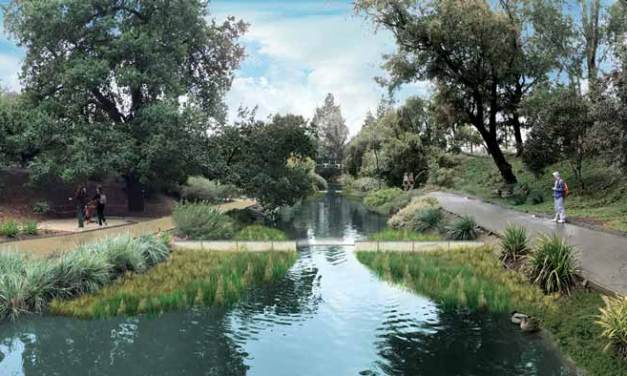 Arboretum Waterway Improvement Begins