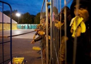 bridges and fences_1