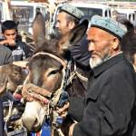 Uighur farmers