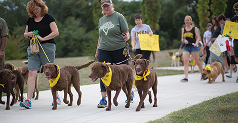 Doggone! UMBC canines strut their stuff at the Puppy Parade.