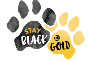 Stay Black and Gold with paw prints