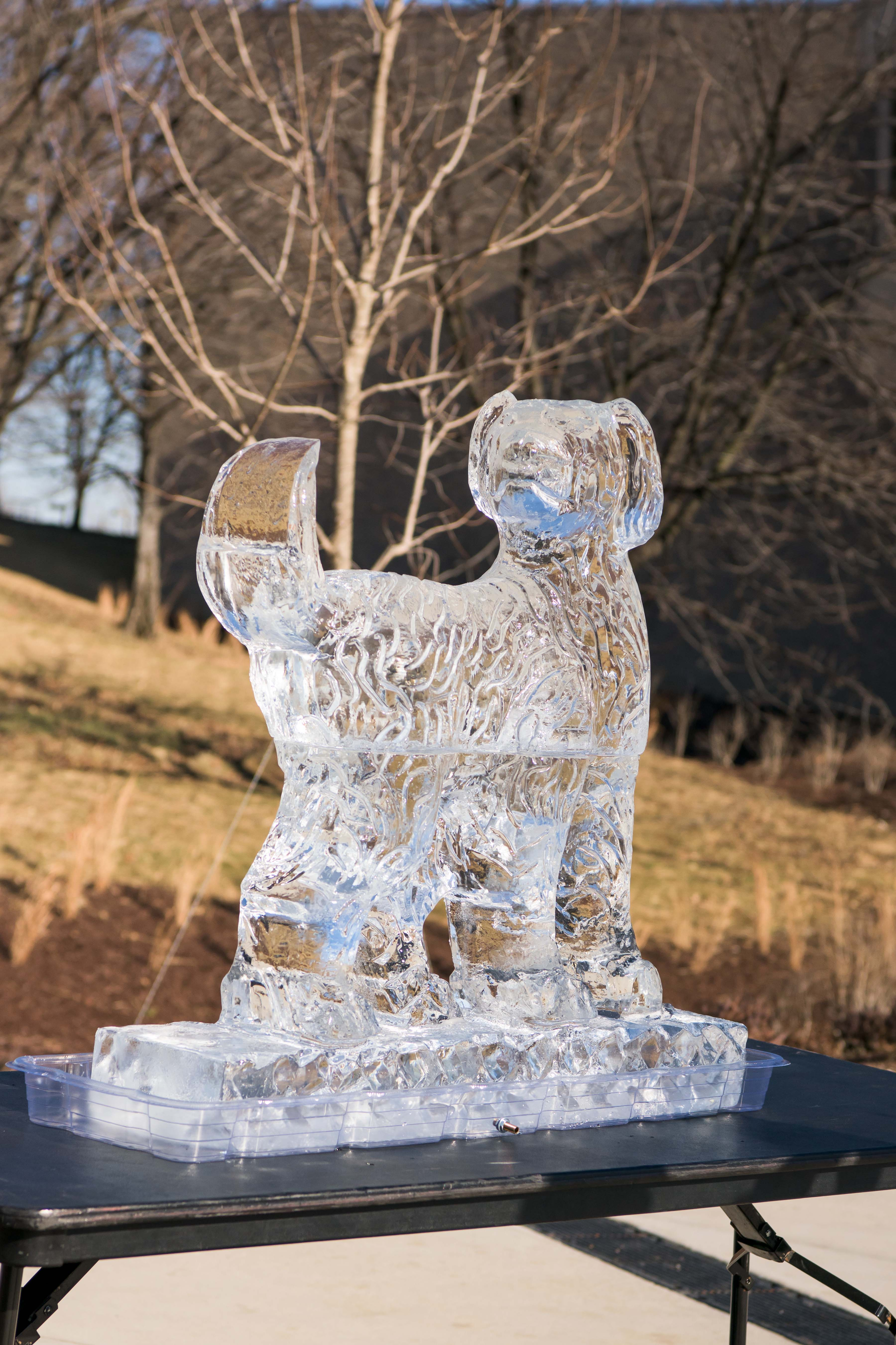 True grit ice statue sits outside event center