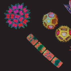 colorful close up of microscopic things