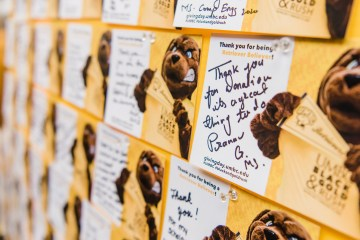 Corkboard of thank you cards from UMBC's 2020 Giving Day
