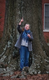 Director of Landscape and Grounds Joni Wilson gestures amid the roots of a willow oak on Ball Circle. (Photo by Norm Shafer)
