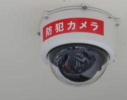 防犯カメラは防犯のためだけにあらず!?ペットの見守りに売り上げ向上、最新活用方法