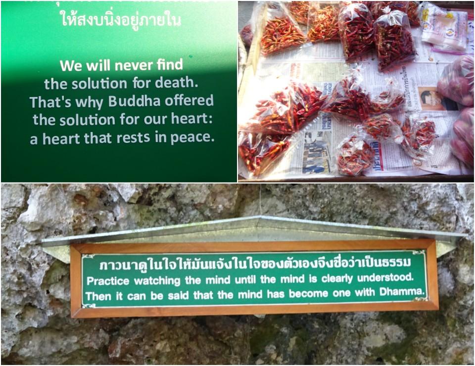 Le uniche due cose che ho temuto in Asia: i peperoncini e gli ammonimenti buddisti affissi agli alberi