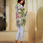 Luxury Silk Wear Collection 2018 by Farida Hasan (13)