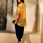 Luxury Silk Wear Collection 2018 by Farida Hasan (5)