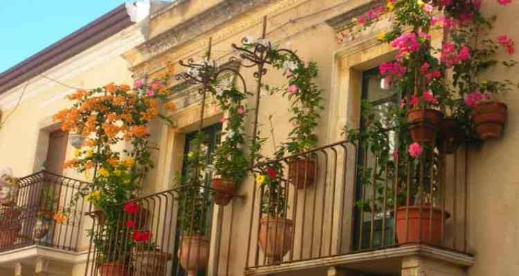 """Da domani 21 Marzo parte la prima edizione della """"Chiaia in fiore – Benvenuta Prima-Vera"""", iniziativa promossa da Chiaia District"""