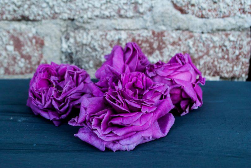 trandafiri pentru sirop
