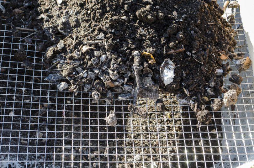 sita cernut compost