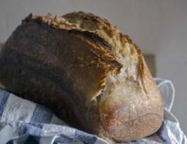 Pâine cu Maia-Schema logică pentru persoanele cu serviciu