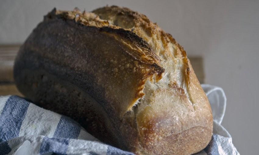 schema pâine cu maia