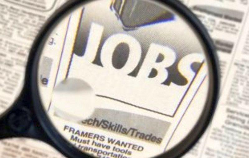 Najnowsze oferty pracy PUP w Lubinie