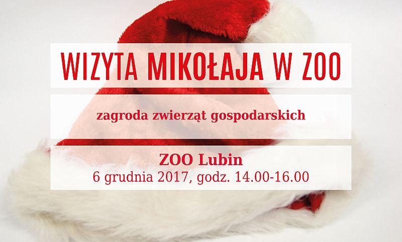 ZOO Lubin – Wizyta Mikołaja w ZOO!