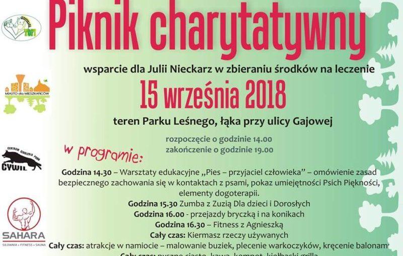 Piknik Charytatywny dla Juleczki