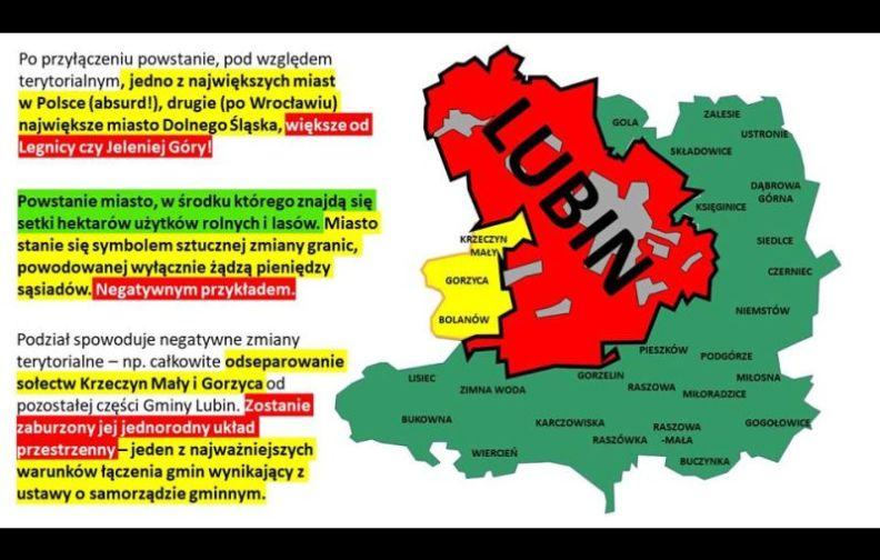 Koalicja z PIS w Sejmiku za gminę wiejską Lubin?