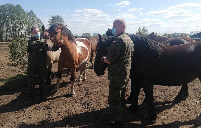 Terytorialsi nieustannie niosą pomoc zwierzętom – pomóż i TY!