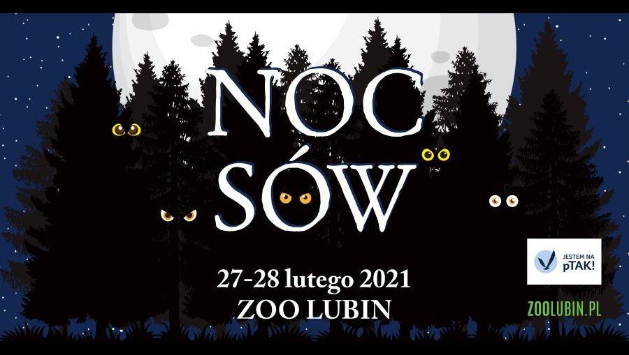 ZOO Lubin – Noc Sów 2021