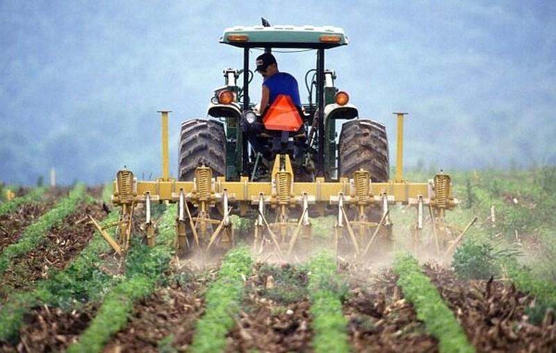Pieniądze dla młodych rolników i na małe gospodarstwa