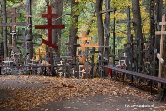 Polska egzotyczna - góra Krzyży