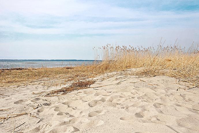 Polskie plaże bez tłoku - Skowronki