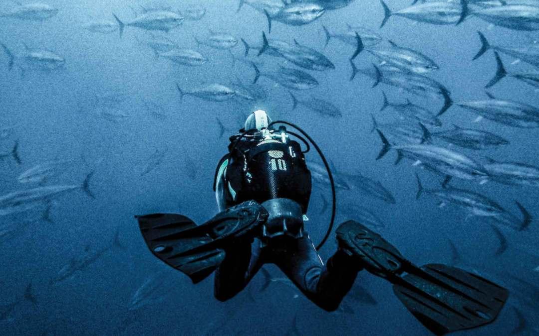 Włochy – złowisz taaaką rybę na Sardynii