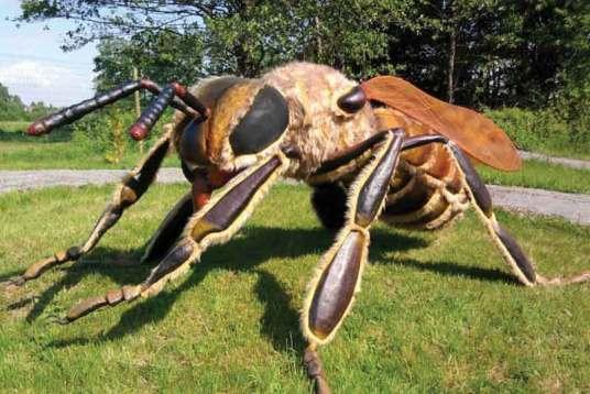 Wustrońskim parku od niedawna można zobaczyć kilkanaście gatunków owadów wrozmiarze większym od człowieka.