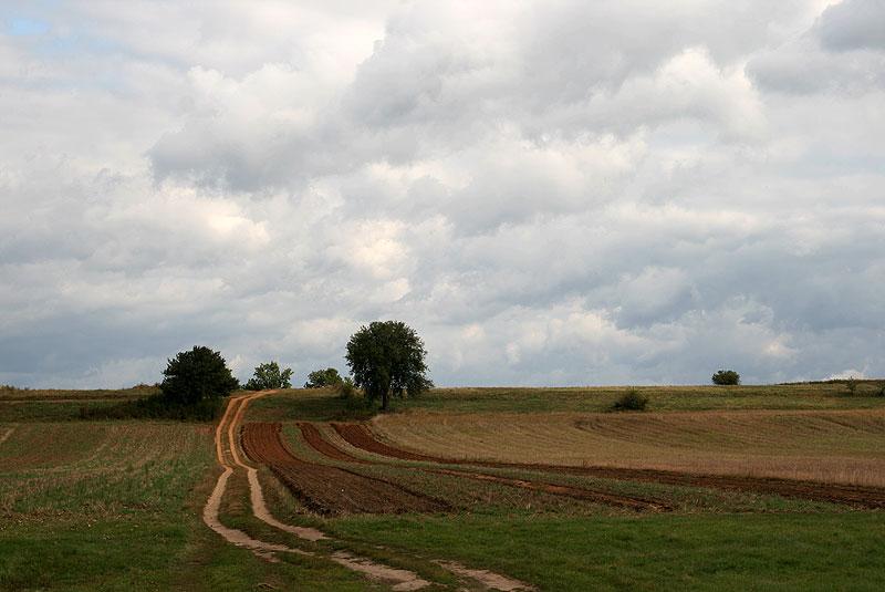 Podszydłowiecki krajobraz, fot. Paweł Wroński