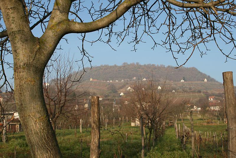 Somló hegy, fot. Paweł Wroński