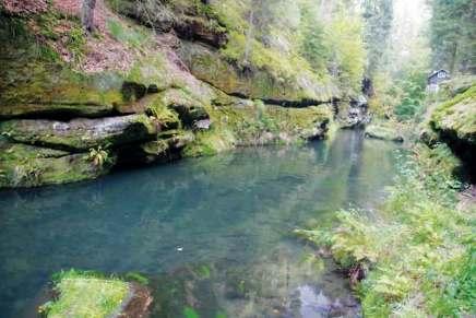 Woda wrzece Kamenice ma piękny szmaragdowy odcień
