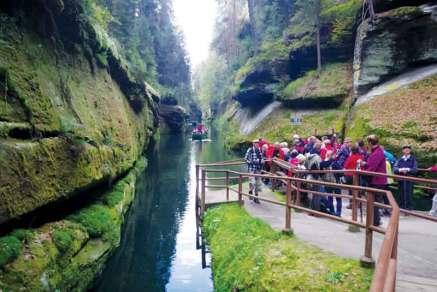 Ścieżka się wzdłuż rzeki Kamenice
