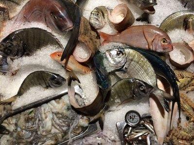 Wybór ryb w La Siciliana, fot. Paweł Wroński