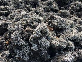 Terazze dell'Etna, fot. Paweł Wroński