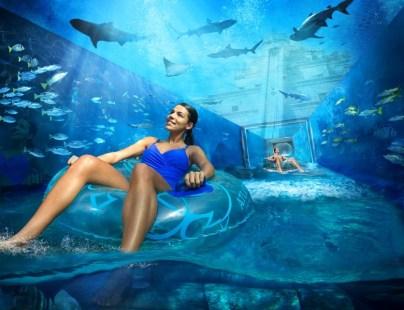 aquaventure-sharkattack