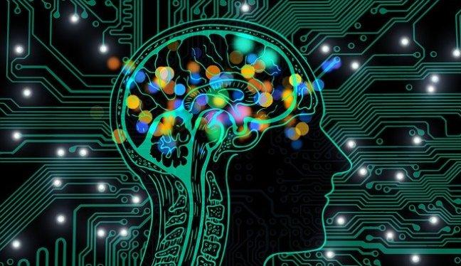 Informationen verändern das Gehirn