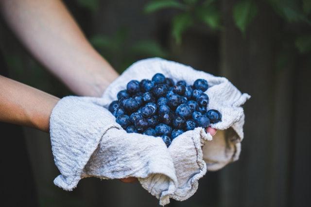"""Blaubeeren werden auch als so genannte """"Brain Berries"""", also """"Gehirnbeeren"""" bezeichnet, weil sie so gut für unsere Gehirnfunktionen sind."""