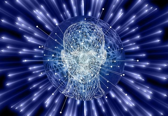 Ein gesundes Gehirn ist essenziell für unsere Lebensqualität.
