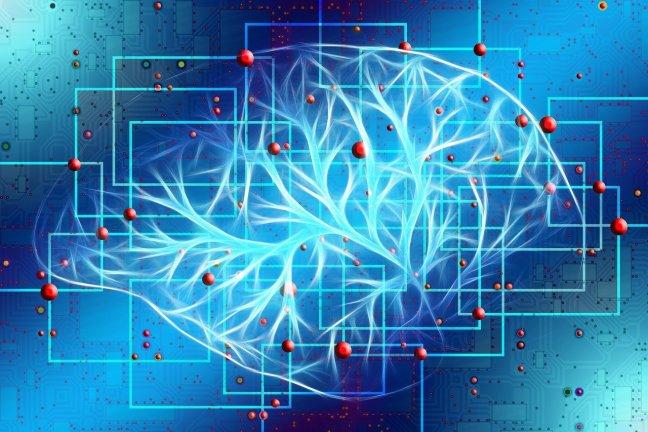 Zentrale Aspekte, was Bewegung für unser Befinden, Gehirn und Gesundheit tun kann.