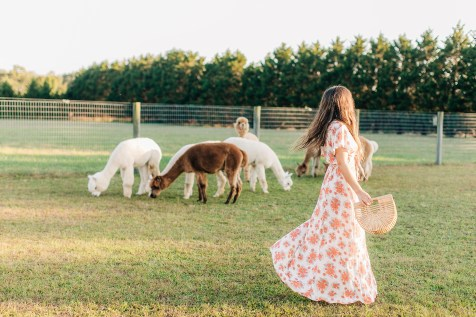 Free-Spirited and Boho Fashion Photography for the Bohemian Mama by Magdalena Studios_0027
