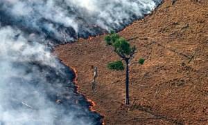 El incendio en el Amazonas es una «catástrofe continental» con «impacto mundial»