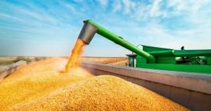 Los ingresos por exportaciones de soja, maíz y trigo alcanzarían los US$ 27.217 millones en 2021