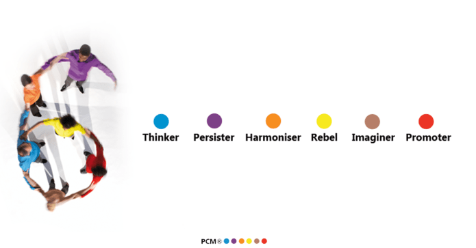 PCM Profiles; PCM Personality Types; Thinker; Persister; Harmoniser; Imaginer; Rebel; Promoter