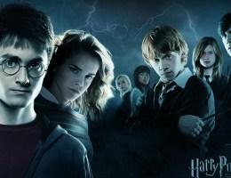 Harry Potter; PCM; Process Communication Model; PCM Trainer; Process Communication Trainer; Magda Tabac;