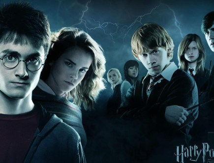 Harry Potter; PCM; Process Communication Model; PCM Trainer; Process Communication Trainer; Magda Tabac;