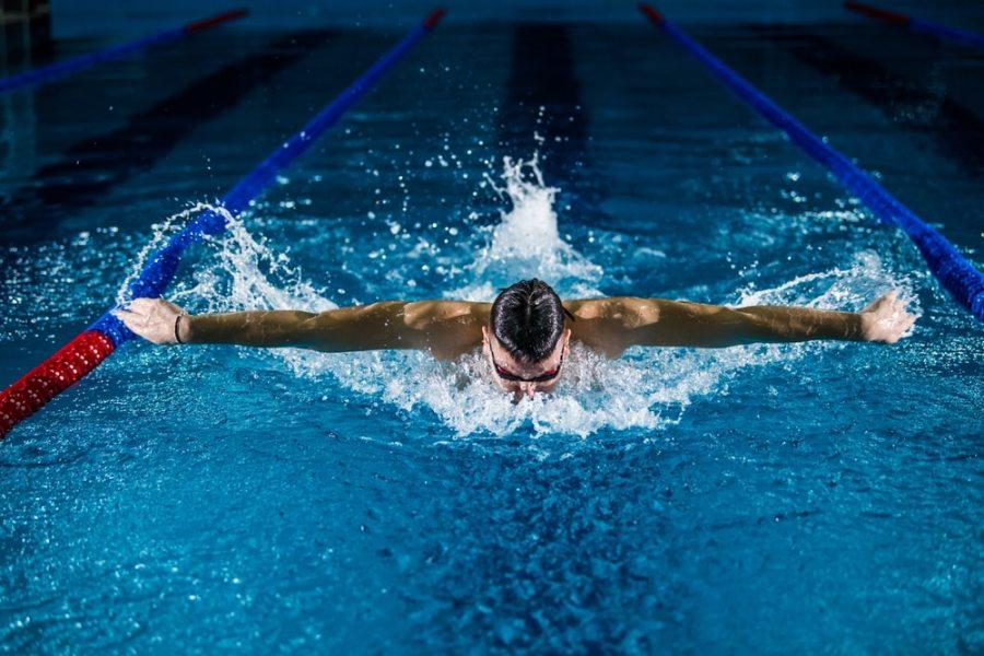 Michael Phelps; Swimming; discipline