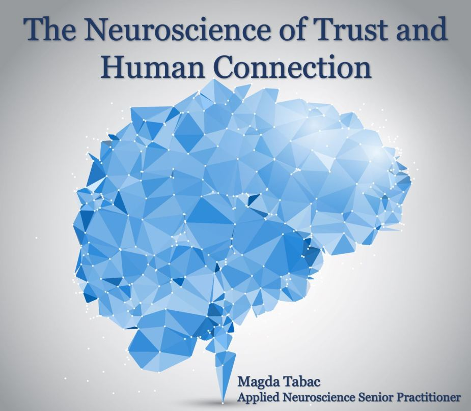 The Neuroscience of Trust and Human Connection 1024x895 - Applied Neuroscience